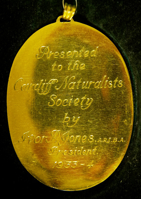Rear of Presidential Badge presented to the society by I P Jones