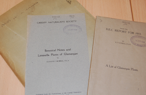 Some of Eleanor's notes and publications, Amgueddfa Cymru National Museum Wales.